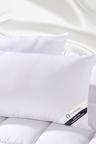 Ramesses Mulberry Silk Contour Pillow Twin Pack