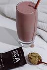 Inca Organics Organic Protein Raw Hemp 65 Superfood Powder-450g