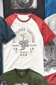 Next Graphic Raglan T-Shirt-Regular - 273058