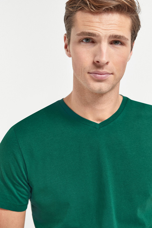 Next V-Neck T-Shirt-Regular Fit