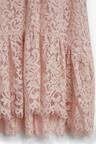 Next Lace Dress (3-16yrs)