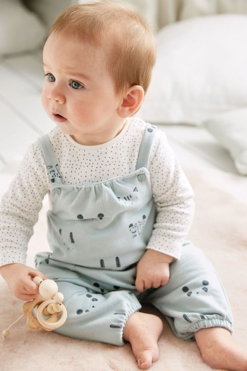 Next Character Dungarees And Bodysuit (0mths-2yrs)