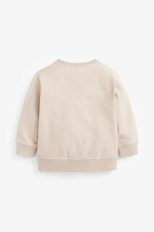 Next Timon Jersey Crew Neck Sweater (3mths-8yrs)