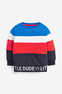 Next Colourblock Jersey Crew Sweater (3mths-7yrs) - 277426