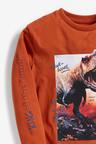 Next Rust Long Sleeve Dinosaur T-Shirt