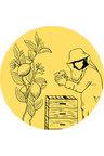 Hexton Citrus New Zealand Raw Honey Limited Edition