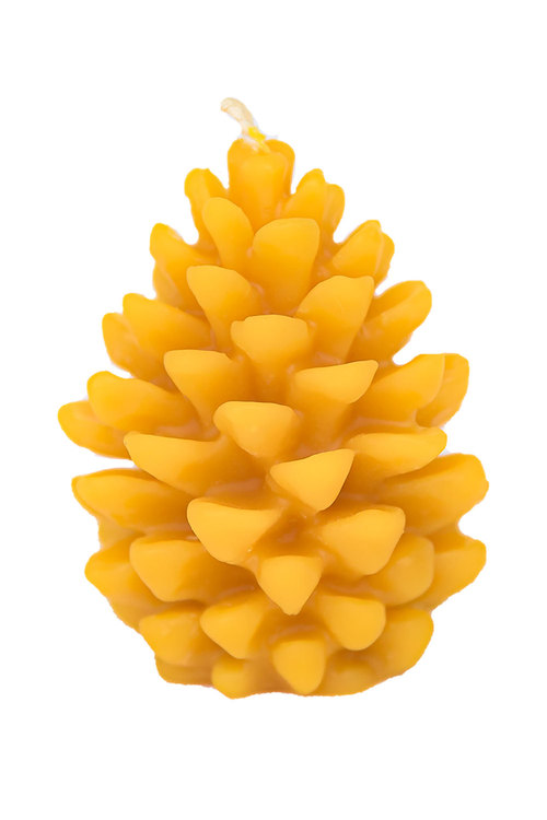 Hexton 100% Beeswax Pine Cone Candle