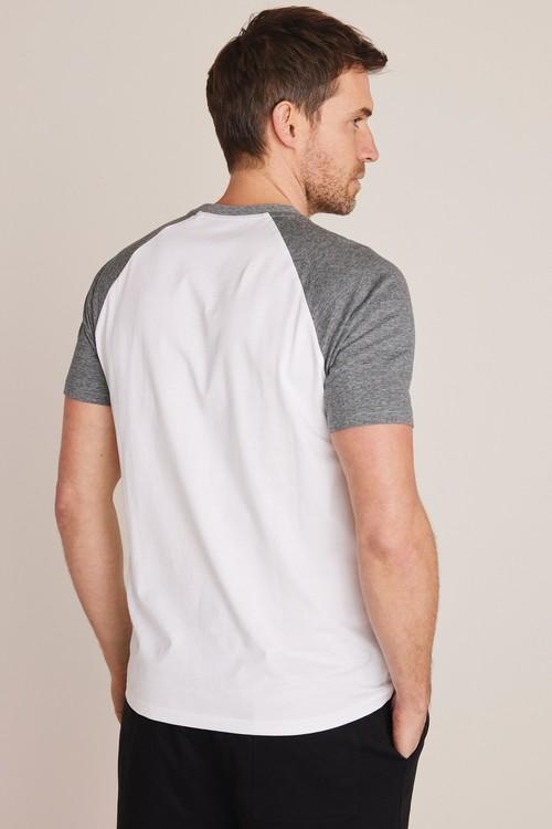 Next Raglan T-Shirts Two Pack