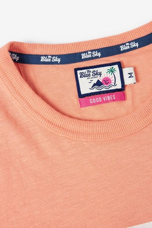 Next Mr Blue Sky Organic Cotton Stripe T-Shirt