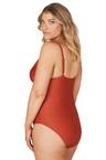 Nip Tuck Swim Orange Gamma Dulcie Tummy Control One Piece Swimsuit