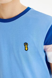 Next Colourblock T-Shirt (3-16yrs) - 289676