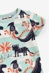Next Dinosaur T-Shirt (3mths-7yrs)