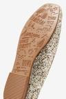 Next Ballet Shoes (Older)