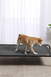 Charlies Pet Elevated Trampoline Pet Bed - 292479