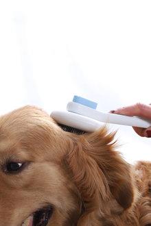 Charlies Pet Soft Brush - 292530