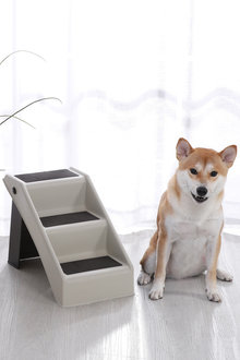 Charlies Pet Portable 3-Step Pet Stairs - 292532