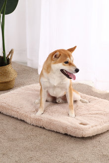 Charlies Pet Faux Fur Padded Mattress - 292543