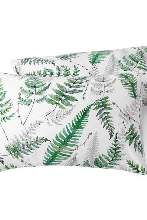 Dreamaker 300Tc Cotton Sateen Printed Standard Pillowcase 2 Pack Green