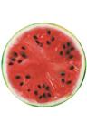 TODO Luxury Edition Fruit Beach Throw Yoga