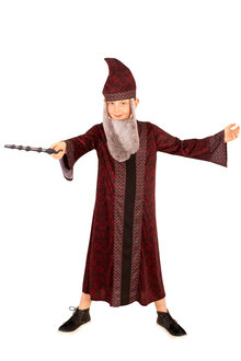 Rubies Dumbledore Child Robe - 294772