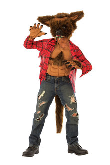 Rubies Werewolf Child Costume - 294999