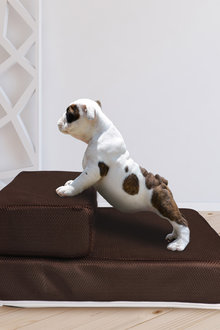 Paws 2 Step Pet Stairs Breathable Dog Cat Sofa Bed Chair Climb - 295456