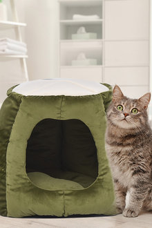 Paws Cat House - 295458