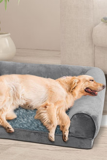 Paws Pet Bed - 295468