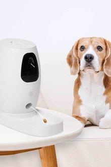 Paws Remote Smart Cam Treater - 295470