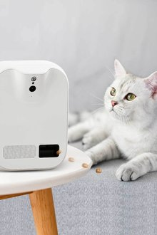 Paws Remote Smart Cam Treater - 295471