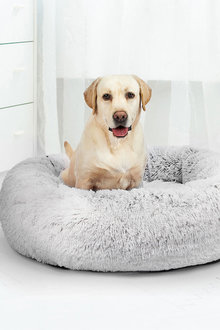 Paws Removable Cover Calming Bed - 295473