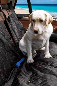 Paws Bench Car Seat Cover - 295481