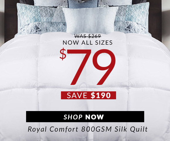 Royal Comfort Silk Quilt