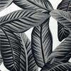 Slate Palm